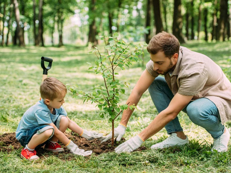 Tree Planting with Kids